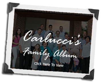 Click Here For the Carluccis Family Album